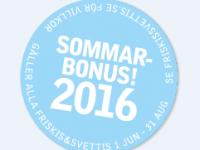 project-sommarbonus